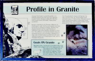 Profile in Granite - Goats ON Granite